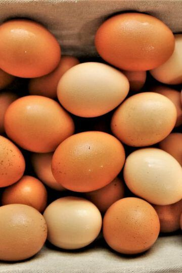 huevos salmonella